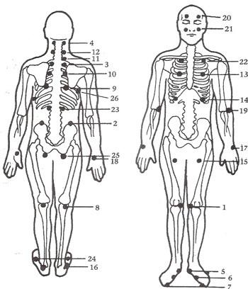 JSJ SEL Diagram